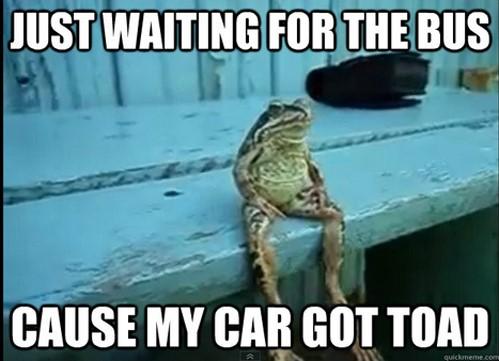 Funny Meme Urban : Best bus memes mega bus