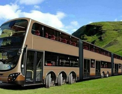 Introducing the world's longest buses