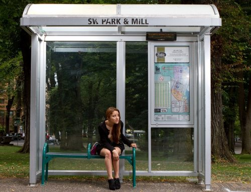 Strange bus stops around the world